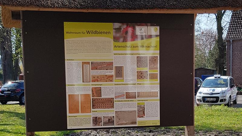 Ausführliche Informationen über Wildbienen erhält man jederzeit zugänglich auf einer neuen Tafel vor dem Bienenmuseum
