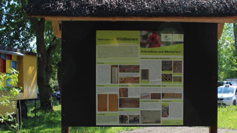 Eine neue Tafel informiert über Wildbienen